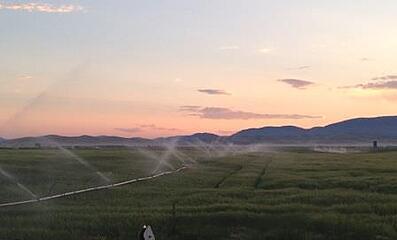 sunset_field_irrigating_WEB