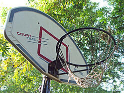 basketball hoop photo