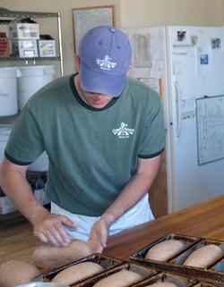 kneading whole wheat bread photo