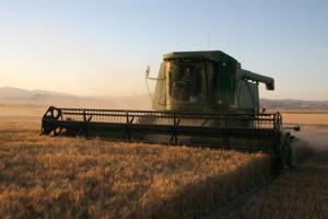 Combine harvest photo