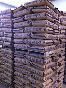 wheat berries to ship photo