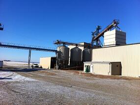 wheat supplier photo
