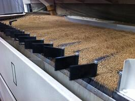 wheat cleaning photo