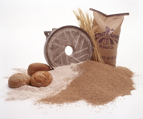 fresh milled wheat photo