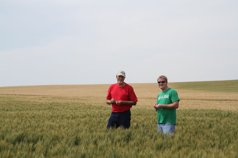 Road Trip: Where It All Starts, With Montana's Wheat-Farming Families