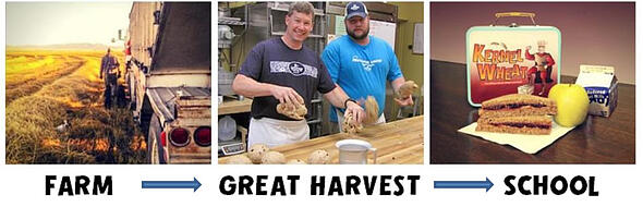 farm_to_great_harvest_to_school_WEB