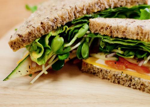 whole wheat sandwich photo