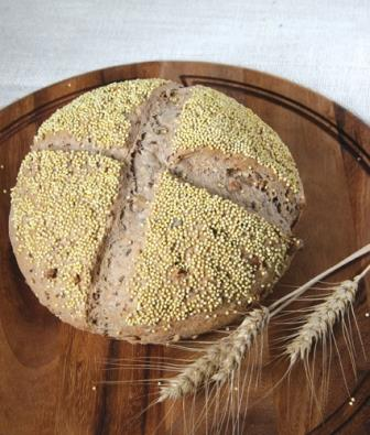 whole wheat bread photo
