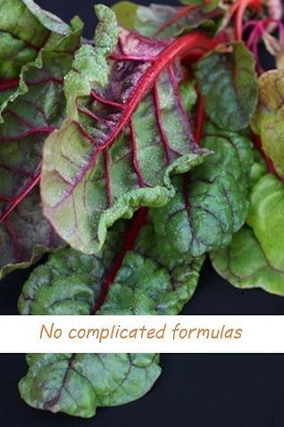 nocomplicatedformulas_web