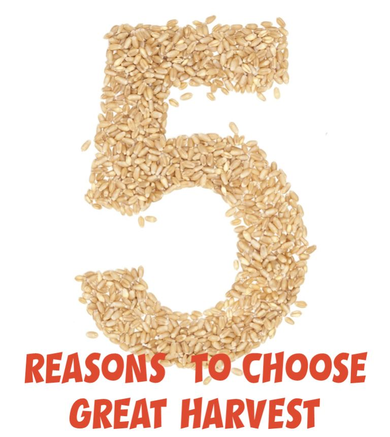 5 Reasons to Choose the Great Harvest Franchise