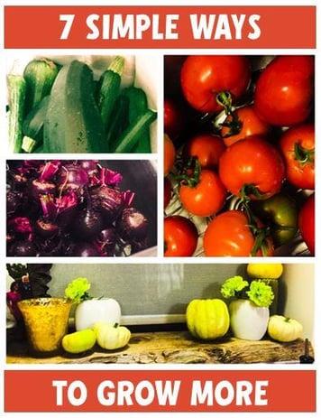 7_simple_ways_to_grow_more_vegetables.jpg