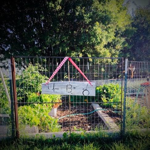 Garden_GateWEB.jpg