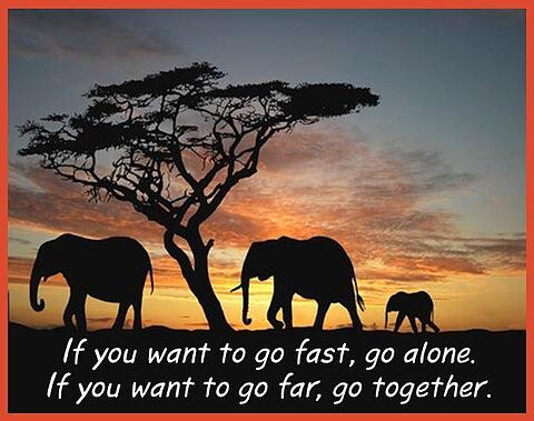 a photo of elephants with text: If you want to go fast, go alone. If you want to go far, go together.
