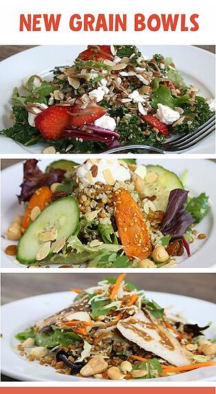 Photo of Great Harvest salads, also called grain bowls