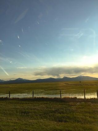 spring-field-montana