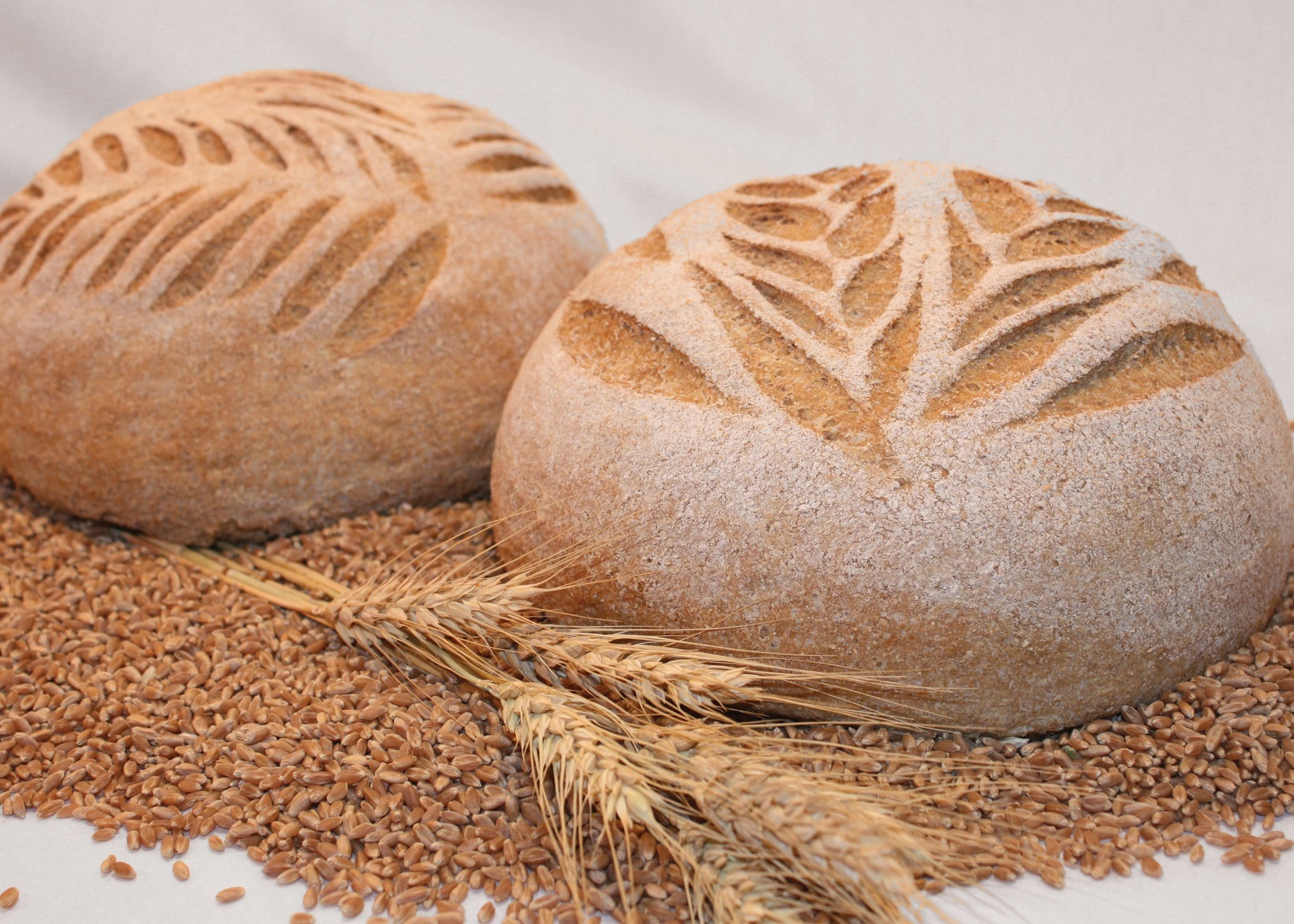 Why Now is the Time to Open a Great Harvest Bread Company Franchise