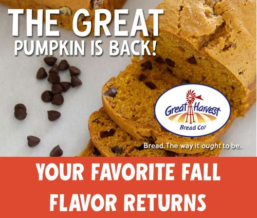Fall Flavors Are Back! Get Them While You Can
