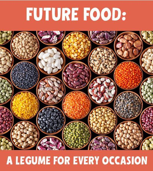 Future of the Food Business: A Changing Food Landscape