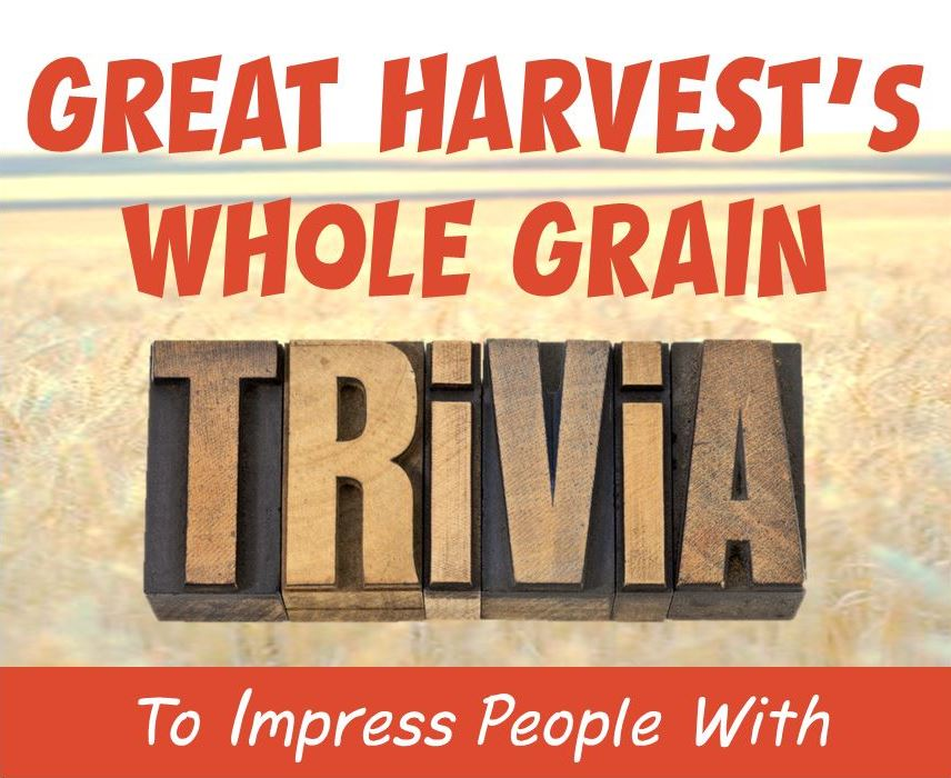 Impress People with These 15 Bites of Whole Grain Trivia